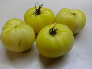 белый амишей бабушки джози (2)