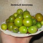 зеленый виноград11
