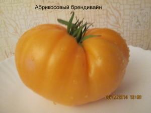 абрикосовый брендивайн