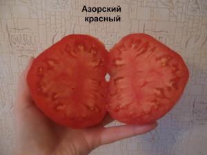 азорскийц красный разрез