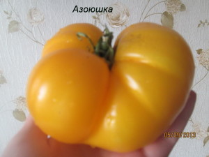 азоюшка29