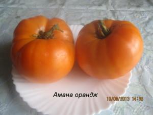амана орандж44