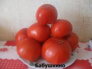 бабушкино2