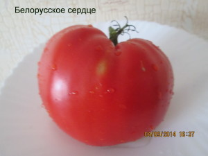 белорусское сердце3