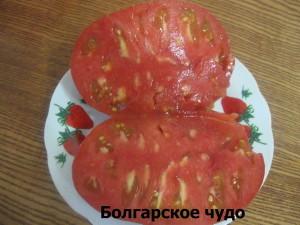 болгарское чудо разрез