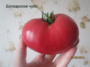 болгарское чудо92