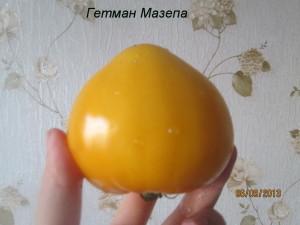 гетман мазепа3