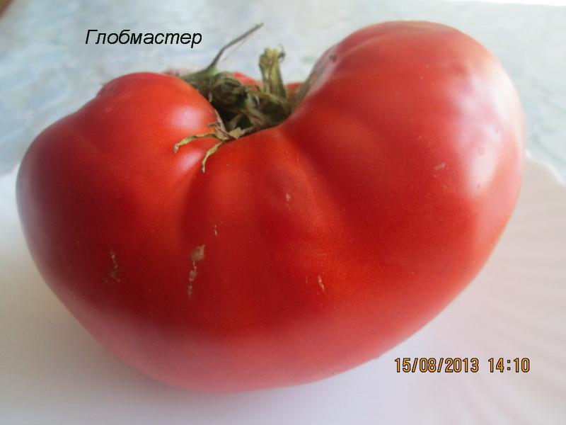 Масса плодов томатов
