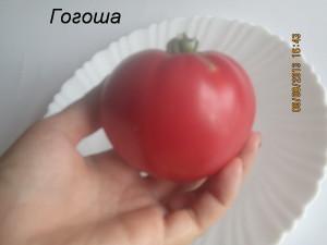 гогоша1