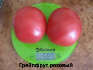 грейпфрут розовый2