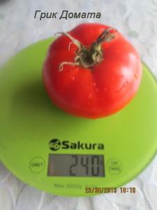 грик домата0