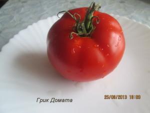 грик домата6