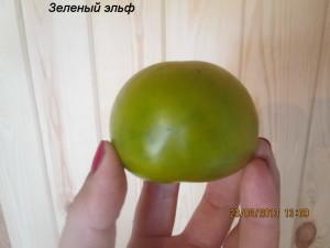 зеленый эльф2