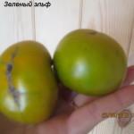 зеленый эльф5