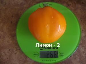 лимон-2 (1)
