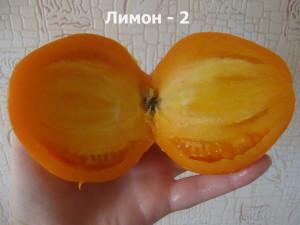 лимон - 2 (2)