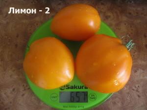 лимон - 2 (3)
