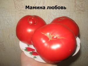 мамина любовь63