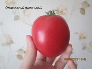 ожаровский малиновый2