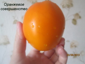 оранжевое совершенство