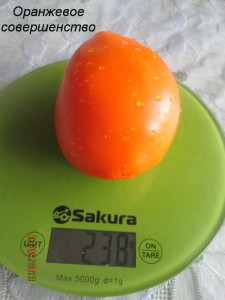 оранжевое совершенство2