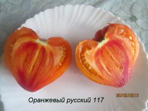 оранжевый русский 117 (2)