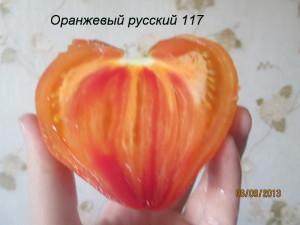 оранжевый русский 117 (3)