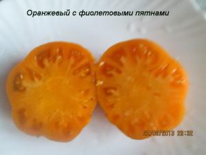 оранжевый с фиолетовыми пятнами2