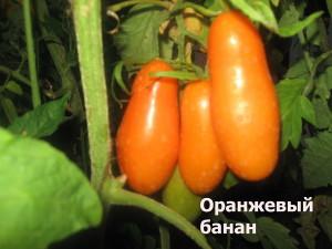 оранжевый 1банан