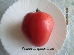 1розовый фламинго3 (1)
