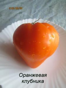 3оранжевая клубника