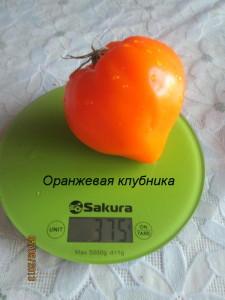 3оранжевая клубника1