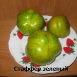 1Стаффер зеленый (1)