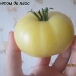 1фантом де лаос3 (5)