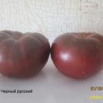 1черный русский3 (2)