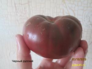 1черный русский3 (3)