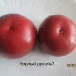 1черный русский3 (9)
