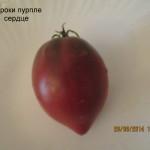 1чероки пурпле сердце1 (2)