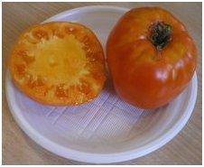 алтайский оранжевый