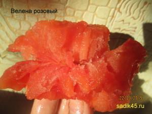 велена розовый1 (7)