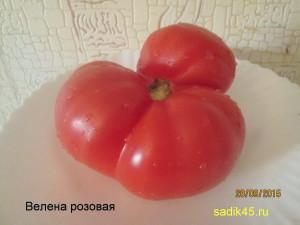 велена розовый1 (8)