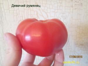 девичий румянец1 (8)