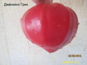 дженкинс грик1 (2)