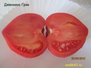 дженкинс грик1 (4)