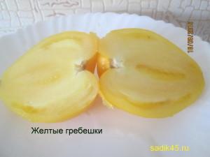желтые гребешки11 (8)