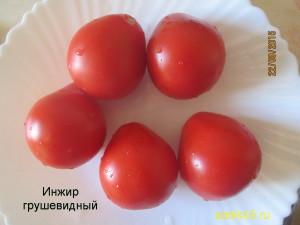 инжир грушевидный11 (5)