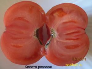 клеота1