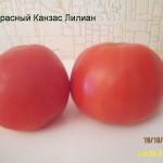 красный канзас лилиан (1)