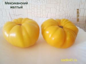 мексиканский желтый (4)