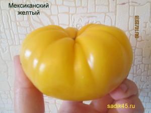 мексиканский желтый (5)